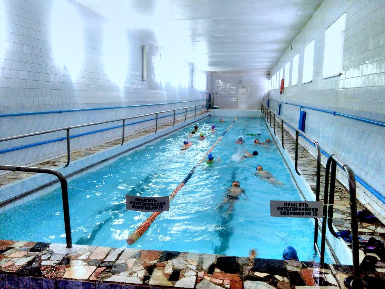 Картинки по запросу плавание в бобруйске
