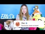 СТИКЕР ЛИС ВК И ЕГО ЗАДАНИЯ ВСЯ ПРАВДА 'ЛИС' ОПАСНЫЙ _ _ Elli Di