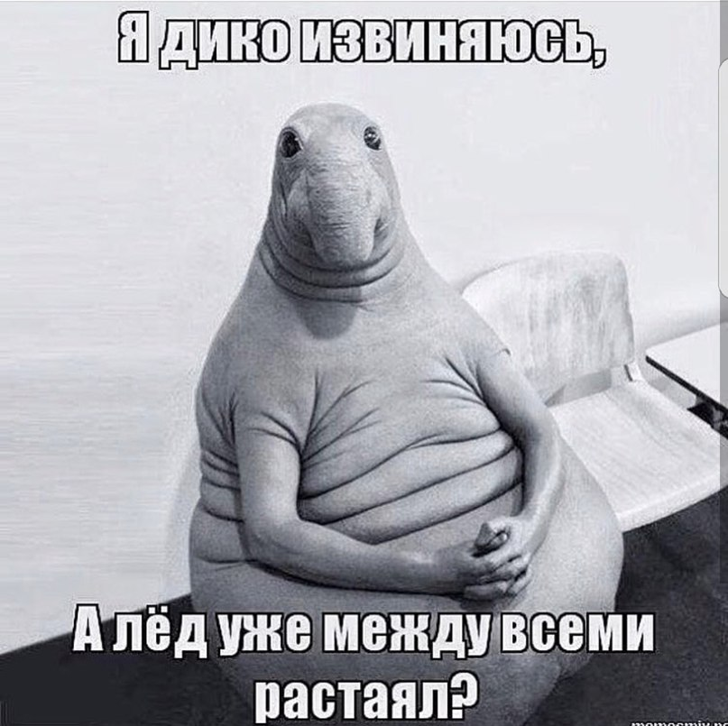 Juliya Grin' | Пересвет