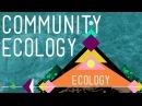 Community Ecology: Feel the Love - Crash Course Ecology 4