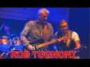 ROB TOGNONI LIVE IN WEIMAR/GERMANY 2016 - ZWIEBELMARKT