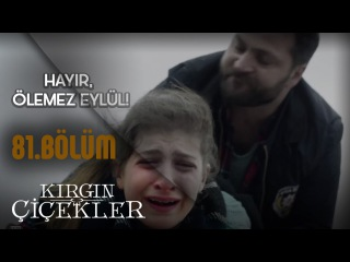 Kırgın Çiçekler 81.Bölüm - Kader, Eylül'ü buluyor!