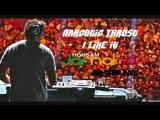 Narcotic Thrust    I Like It (Hossam Jamaica bootleg )