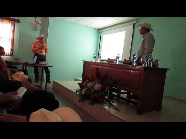 Beefmasters at the Havana Cuba Livestock Show 2017