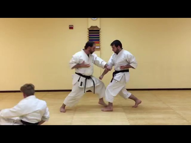 Shotokan Karate HOW TO: (Advanced Karate Techniques) 12
