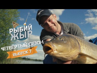 Рыбалка с гидом. Ловля карпа на флет фидер 2017 на водоеме