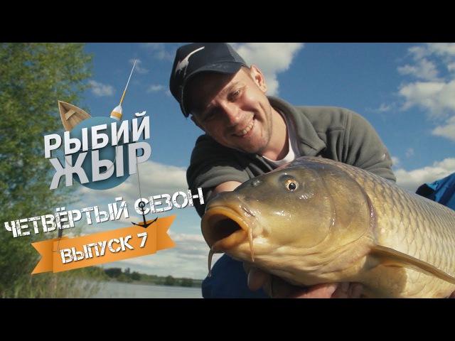 Рыбалка с гидом. Ловля карпа на флет фидер. Рыбий жЫр 4 сезон выпуск 7