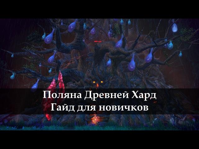 СИЛА ЛАКАНА Поляна древней/Шанс Велики Хард прохождение Tera Online Гайд новичку