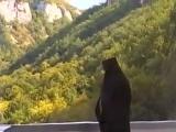 Крымская Лавра (Свято-Успенский мужской монастырь)