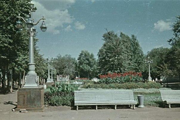 Струковский сад, 1955 год.