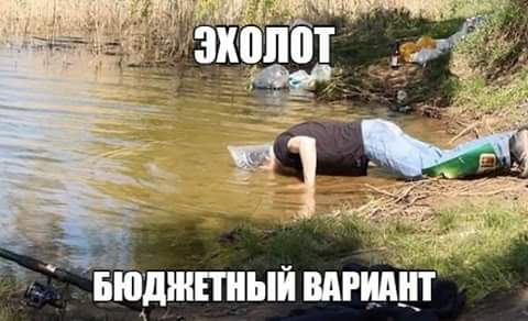 https://cs7056.vk.me/c836439/v836439364/a3d7/I2_aZMQMgCM.jpg