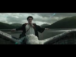 С днем рождения, Гарри Поттер! Фан-видео