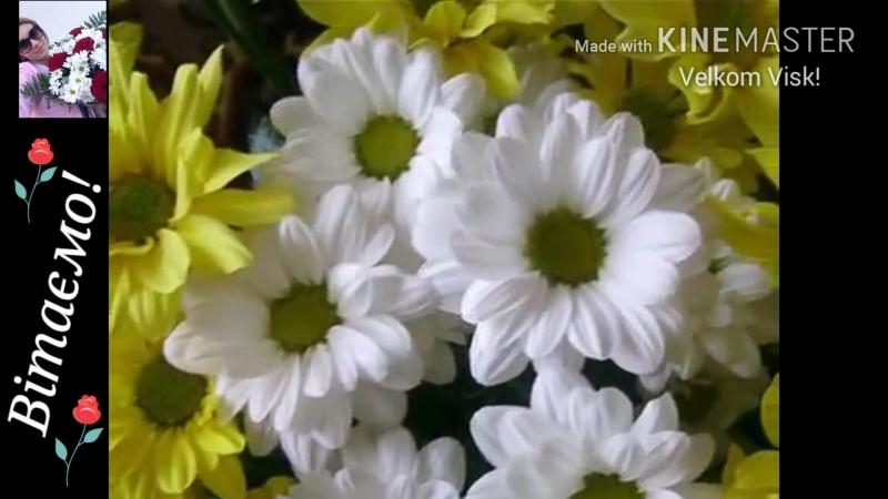 Сьогодні свій день народження святкує, Танюша Кузьма з Буштина: m.vk.com/tanja_tanjak Вітаємо іменинницю!