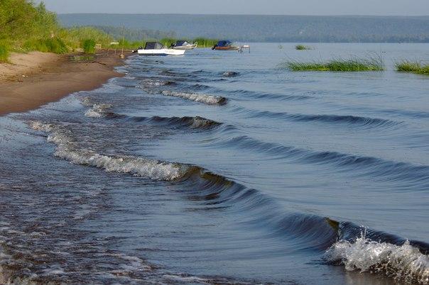Остров Грязи(Тушинский) Автор фото: Константин Байгузин