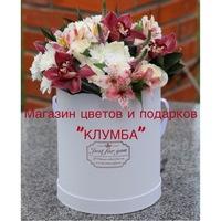 Доставка цветов в севстополе где купить комнатные цветы оптом в г.омск