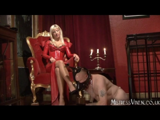 Mistress Vixen - Christmas doggis