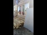 Шандор Цыган - Live