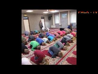 Deutsche Kinder sind verpflichtet zu Allah zu beten
