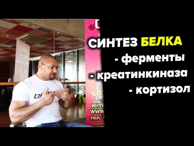Синтез белка, ферменты, креатинкиназа, кортизол Дмитрий Яковина