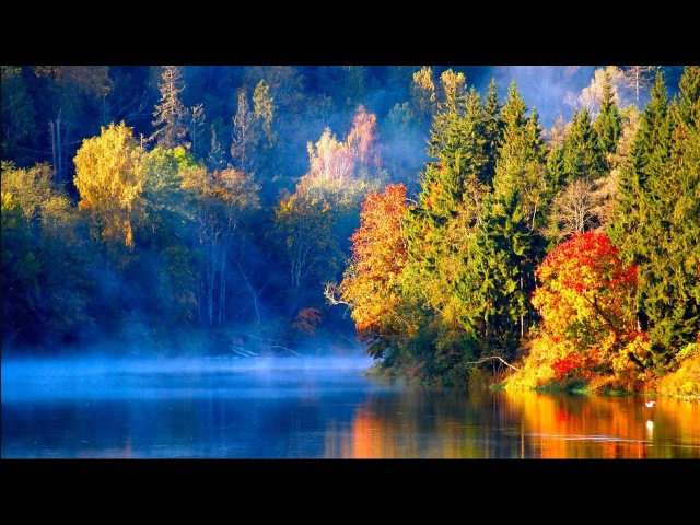 *Magical Autumn*