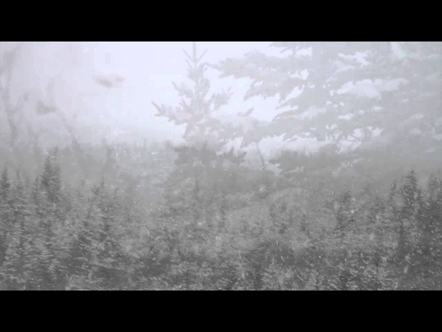 Evilfeast - (Interlude) Passing The Meadows In Woe