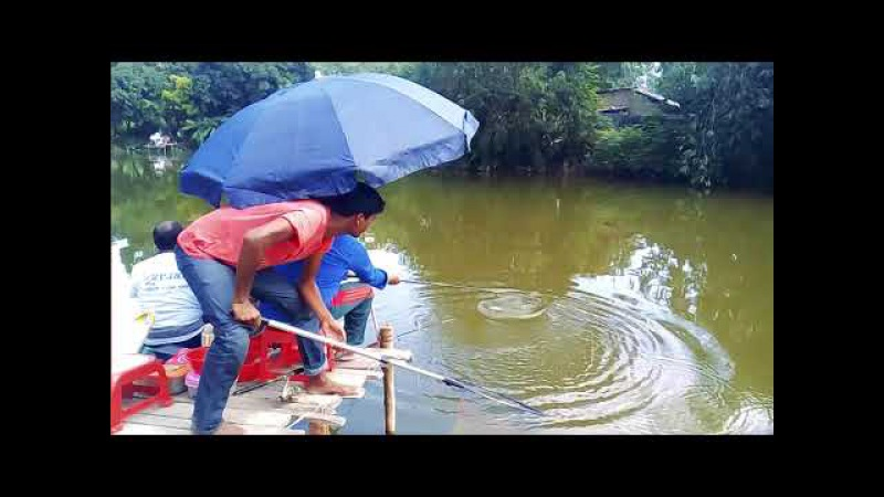 Rohu Fish Catching By Fishing Rod And Fish Hook - Rohu Fish Hunting Video By Fish Watching