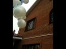 Испытание на летучесть олимпийского мишки. запуск шаров в Тольятти