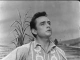 Johnny CashI Walk The Line