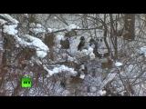 В бой с обнажённым торсом_ морпехи США и Южной Кореи провели совместные зимние учения