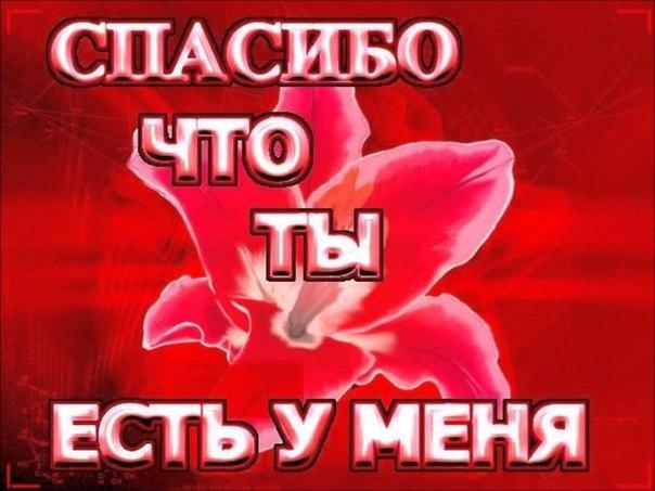 Фото №456243386 со страницы Алексея Чеботарева