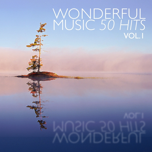 Wonderful Music - 50 Hits Vol. 1