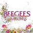 mp3.vc - The Bee Gees(я не знаю что такое сиси кэйч,потому что мои родители слушали Би Джис) - How Deep Is Your Love