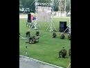 показуха 31 оДШБР. на фестивале От Авгана до Чечни.