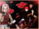 Sakura and Chiyo vs Sasori AMV