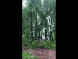 Ураган в Москве 29.05.2017 2