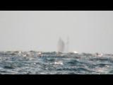 A Ghost Ship Appears on Lake Superior (Original) Jason Asselin