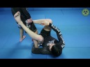 DLR Footlock | How to BJJ Techniques