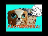 МЕГА MIXРаспаковкаГолубоносые друзья/Долина драконов/2Kinder/Динозавры мультфильма/Tsum-Tsum/Sweet