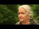Чем кормить МОЗГ Память Мышление Татьяна Владимировна Черниговская