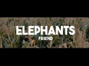 The Elephants - Friend (Official Music Video)