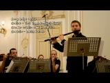Antonio Vivaldi - Concerto in G minor for flute, strings &amp basso continuo