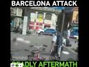 VrsolovievСоболезную народу Испании Терроризм это страшное зло И бороться с ним необходимо совместно Для этого мировым лидера