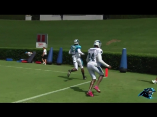 One-handed grab Devin Funchess!