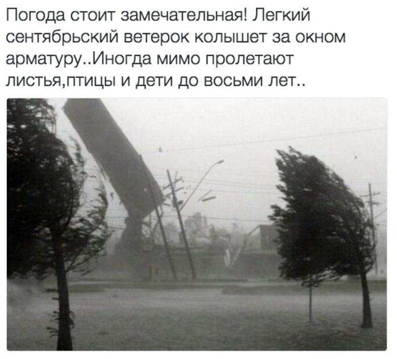 https://pp.userapi.com/c836521/v836521717/75bf0/azgDrW-KgVE.jpg