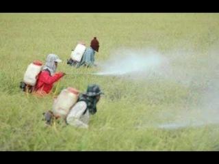 บรรยายตรงไปตรงมา กับผู้รู้เกษตรอินทรี&#