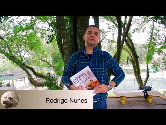 Depoimento de Rodrigo Nunes - O Vendedor Pit Bull 2