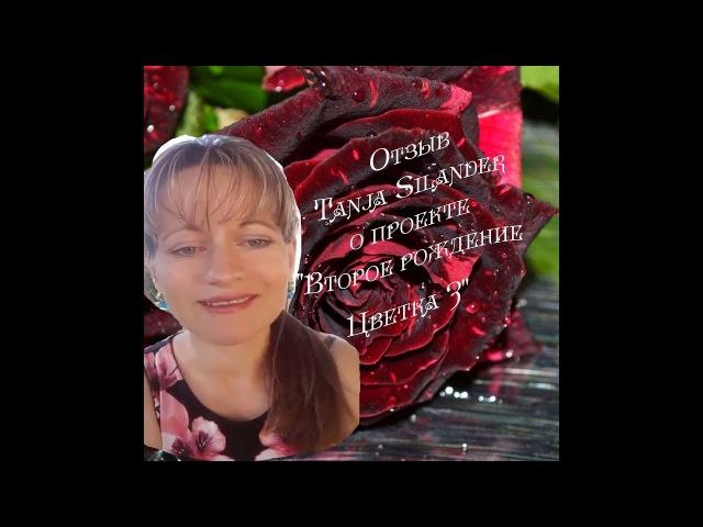Отзыв Tanja Silander о проекте Второе рождение Цветка 3