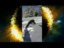 Max Jaguar TV Буковель зима 2017 - Когда захотелось на море ! Ахах!! Смешное видео! Прикол 2...