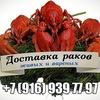 Раки. Купить живых, вареных раков в Москве