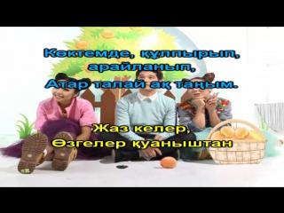 Серик Ибрагимов Лашын АСЕМ АН КАРАОКЕ ҚАЗАҚША / КАЗАХСКОЕ КАРАОКЕ